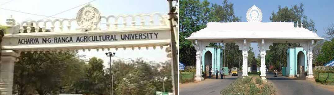 Acharya N. G. Ranga Agricultural University