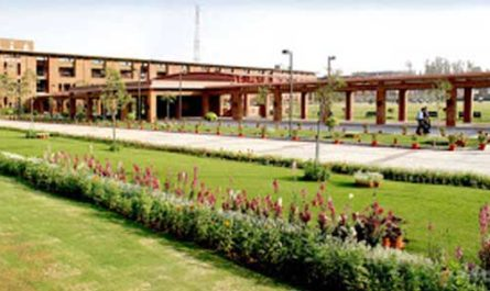Search Results Web result with site links Jaypee University of Information Technology